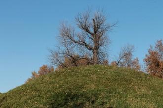 mounds_2182