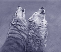 two_wolves_howling_mixed_media